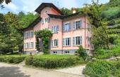 PR_P11, Villa con dependance